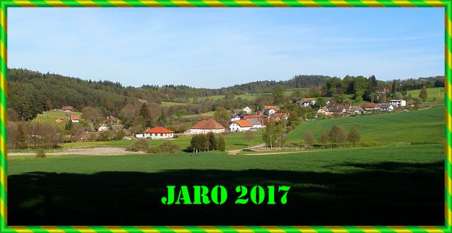 JARO_2017